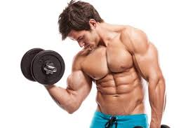 How to increase muscle or fat fingers